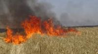 منوبة:حريق